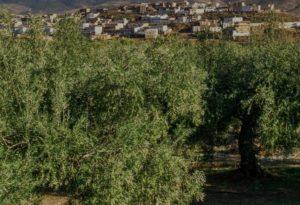 Actividades Rurales Cordoba - Casa Rural La Jarilla